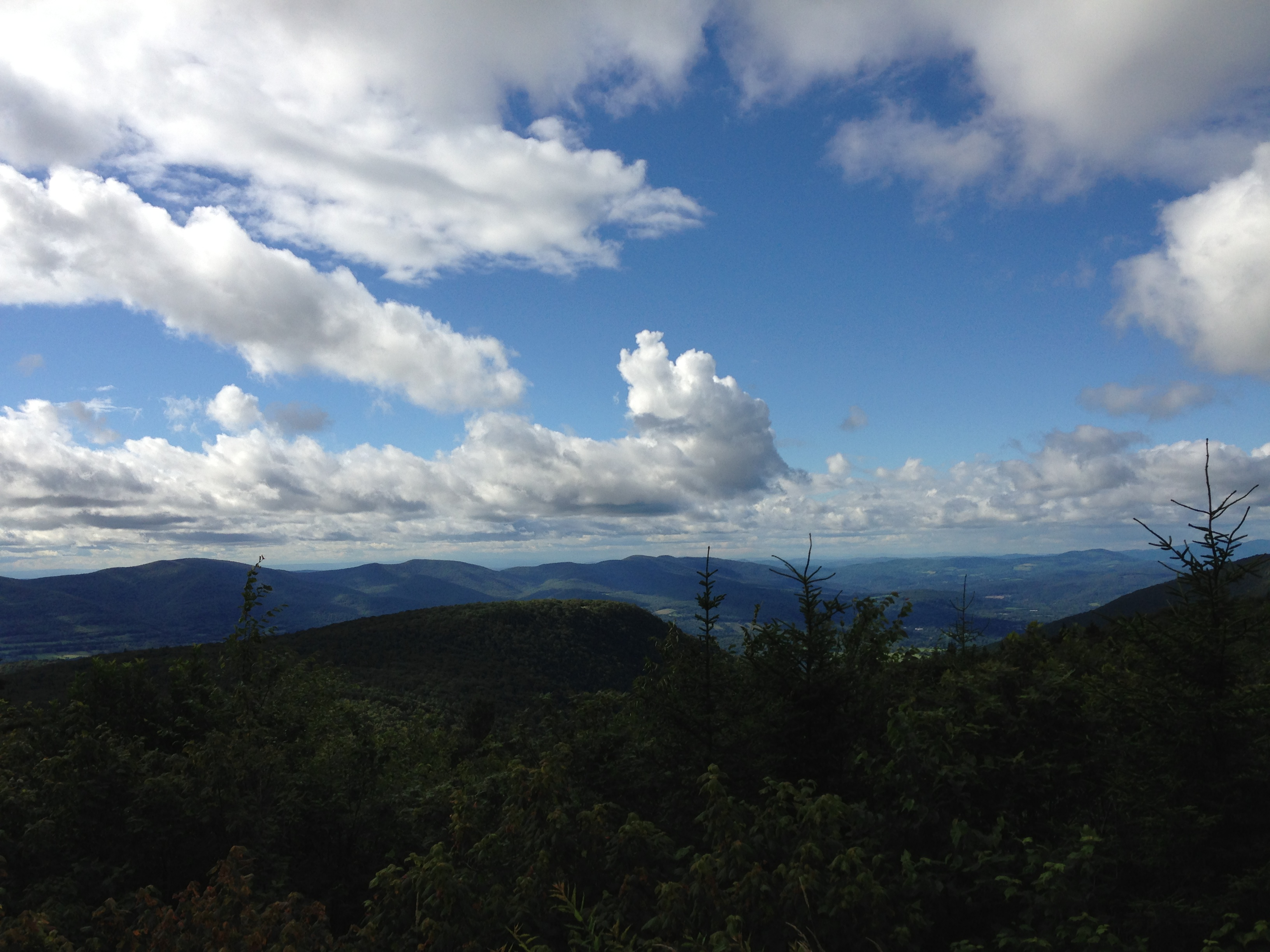 one view from Mt. Greylock